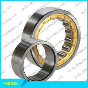 Single Row Cylindrical Roller Bearing Nu10/750, Nu20/750, Nu20/800 pictures & photos