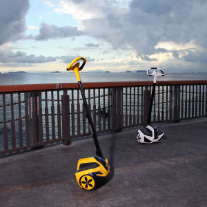 Inmotion Mini Electric Chariot