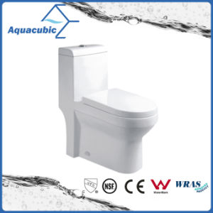 Siphonic One-Piece Dual Plush Ceramic Toilet (ACT9322) pictures & photos