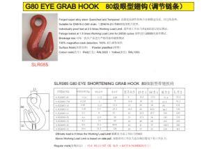 SLR85-Wll3.15ton Grade 80 Eye Grab Hook pictures & photos