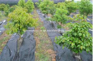 PP/PE Woven Landscape Fabric 105GSM pictures & photos