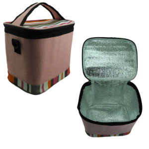 Promotional Summer Cooler Bag (CB-010) pictures & photos