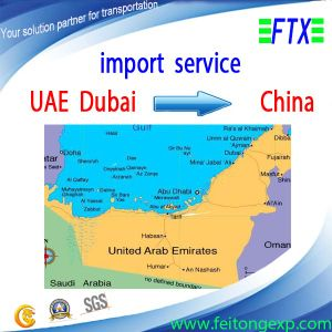 Import and Export Agency From UAE Dubai to China