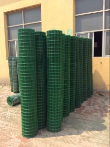 PVC Coated Welded Wire Mesh Roll pictures & photos