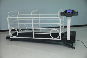 Uhd-6688 Pet Treadmill for Pet Health pictures & photos