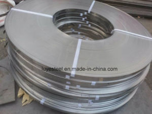 ASTM 310S Stainless Steel Strip Belt pictures & photos