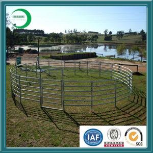 Top Class Cattle Panel/Livestock Panel (LA001) pictures & photos