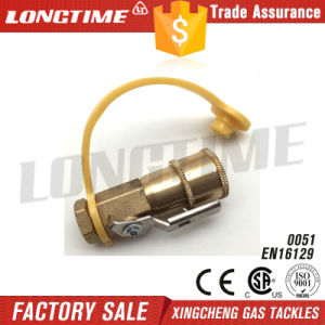 """1/4""""Quick Coupling with Shut off pictures & photos"""