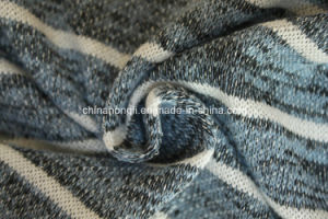 Fashion R/P 53/47, 210GSM, Yarn-Dye Coarse Knit Fabric for Lady′s Garment pictures & photos