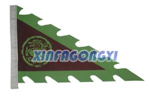 Advertising Flame Pennant Flag/Customized Bunting Flag pictures & photos