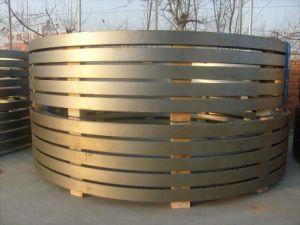 Steel Flange pictures & photos