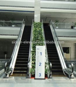 German Tech and European Quality Srh Escalator (GOST, CUTR) pictures & photos