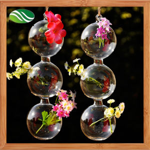 Hanging Glass Flower Vase Mouth Blown Glass Vase pictures & photos