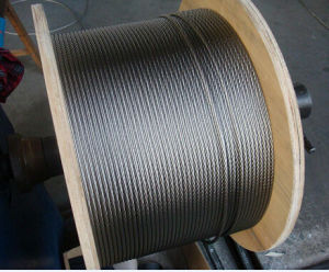 Hot Sales Galvanized Steel Wire Rope pictures & photos