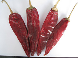 Hot Pepper--Yidu Chilli pictures & photos