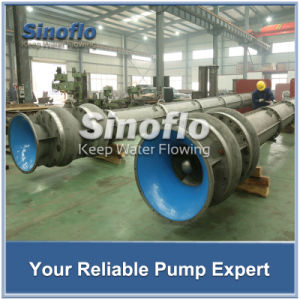 Long shaft Overhung Multistage Vertical Turbine Seawater Sump Pump pictures & photos