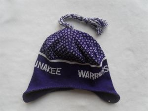 Knitted Beanie/Beanie Hat/ Sports Beanie/Winter Beanie 005 pictures & photos