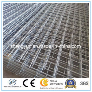 Galvanized Welded Wire Mesh Panel (Factory&Exporter) pictures & photos