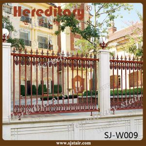 Aluminum Garden Fence / Fencing / Railing for Villa (SJ-W009) pictures & photos