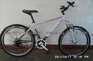 MTB Bike (WT-2610) pictures & photos