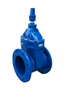 As2638.2 Soft Seated Gate Valve pictures & photos