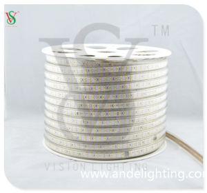 Waterproof IP65 60 LEDs SMD5050 1m/Cut Flexible Strip Light pictures & photos