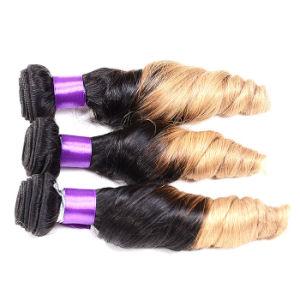 Brazilian Body Wave 3 Bundles 7A Mink Brazilian Virgin Hair Body Wave T1b/Red Ombre Brazilian Human Hair Weave Bundles pictures & photos