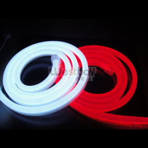 24V White Red LED Neon for Illuminated Sign Lighting