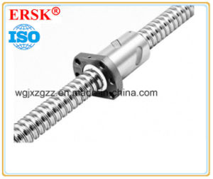 Precision Ground Ball Screw with Sfu Series pictures & photos