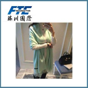 Long Style Lady 100% Cashmere Scarf pictures & photos