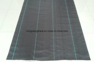 PP Black Woven Geotextile and Ecological Weed Mat in Roll pictures & photos