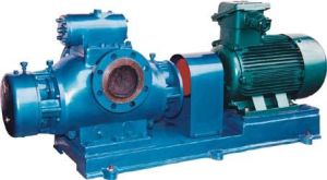 Multi Function Twin Screw Pump Manufacturer pictures & photos