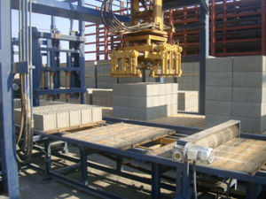 Concrete Block Machine Plant pictures & photos