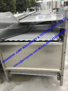 Large Capacity Pumpkin Puree/Pulp Production Line pictures & photos
