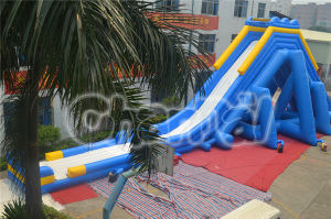 Hippo Slide Inflatable Big Long Slide (CHSL312) pictures & photos