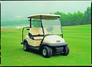 Hot Sale 2 Seater Electric Golf Cart for Golf Course pictures & photos