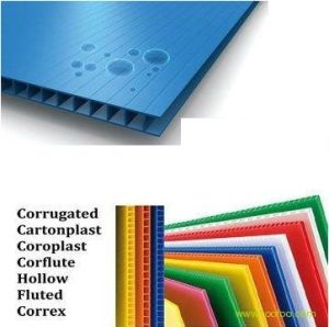 PP Corrugated Plastic Sheet/PP Hollow Sheet/PP Hollow Board (QC2031)