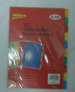 Index Tab Divider/ Plastic File Folder (B3109) pictures & photos