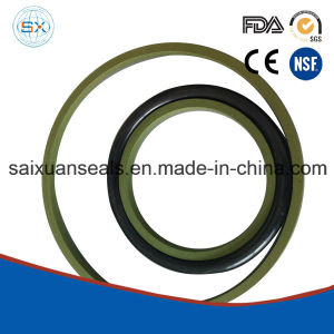 Injection Moulding Machine Parts Step Seal pictures & photos