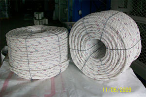 PP Danline Rope Making Machine pictures & photos