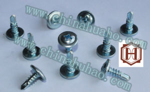 Screw/Modified Truss Cross Recess Head Self Drilling Screw Hot pictures & photos