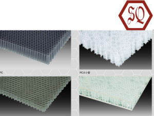 PP or PC Plastic Honeycomb Plate or Panel