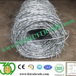Barbed Wire for Sale in Saudi Arabia Market pictures & photos