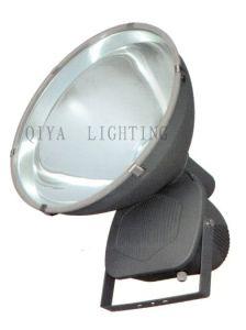 Flood Light (QYTG308-M) pictures & photos