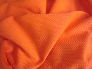 Bird-Eye Fluorescent Fabrics-2