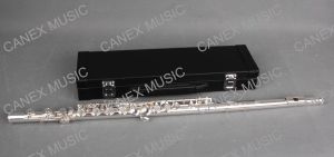Junior Flute/16 Holes Flute (FL16E-S) pictures & photos