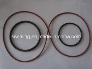 Oil Seal/ Silicone O-Ring/Nitrile O Ring