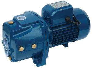 Deep Well Jet Pump (CPM158) pictures & photos