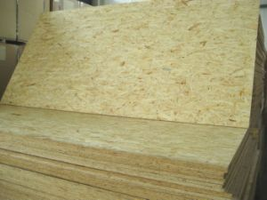 OSB Board (Oriented Strand board) pictures & photos