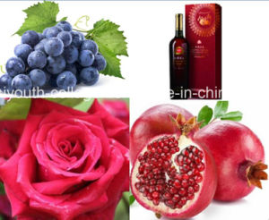 Top EU Wild Rose Grape Pomegranate Wine Chinese Patent/Brut, Rich Anthocyanin, Amino Acids, Anticancer, Antiaging, Blood Tonic, Aphrodisiac Wine pictures & photos